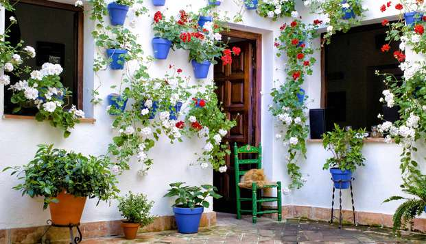 Especial Cordoba, descanse en pleno Barrio de la Judería y disfruta del tour de los patios