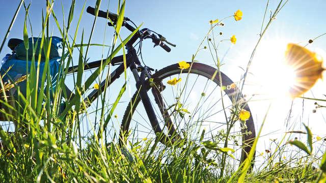 Location de vélos (jour 1 et jour 2)