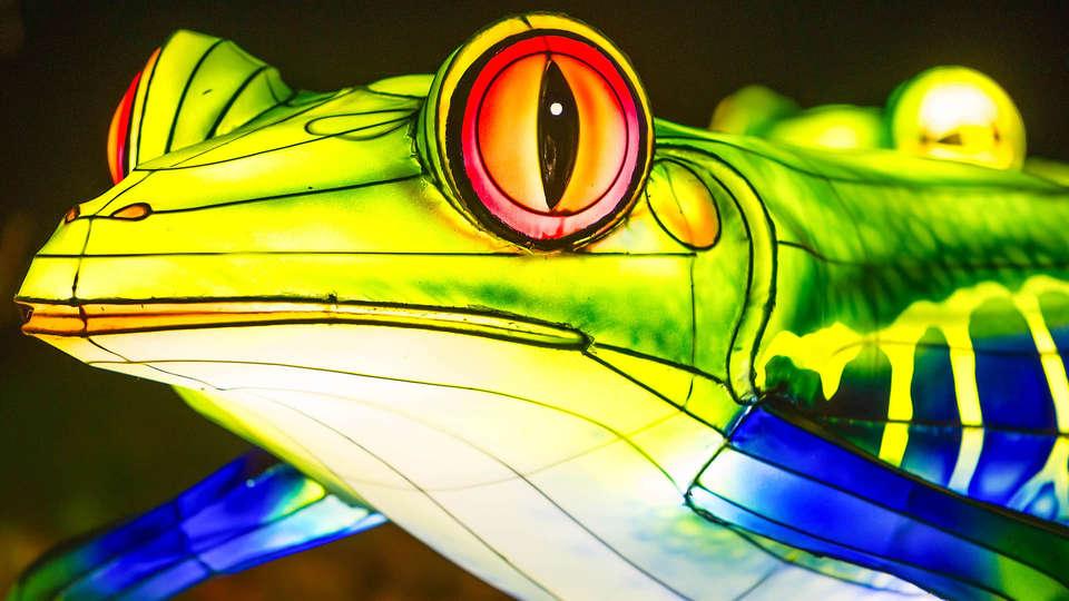 Novotel Saclay - EDIT_grenouille__01.1.jpg
