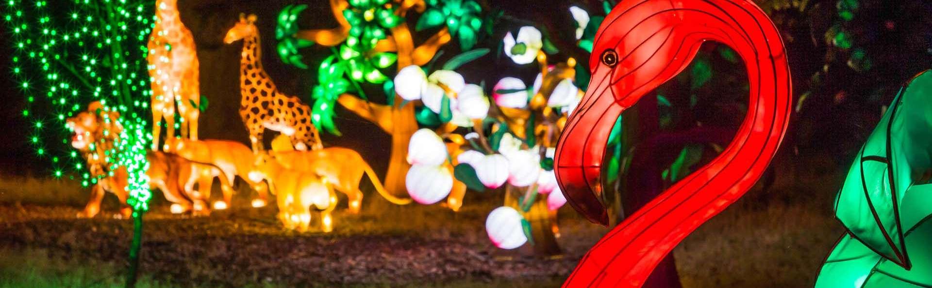 Bezoek aan de Zoo van Thoiry en charmante verblijfplaats