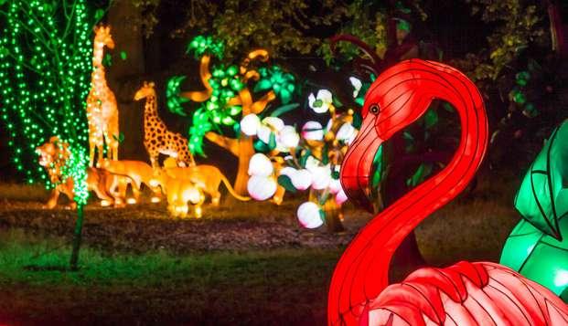 Visite du ZooSafari de Thoiry et demeure de charme