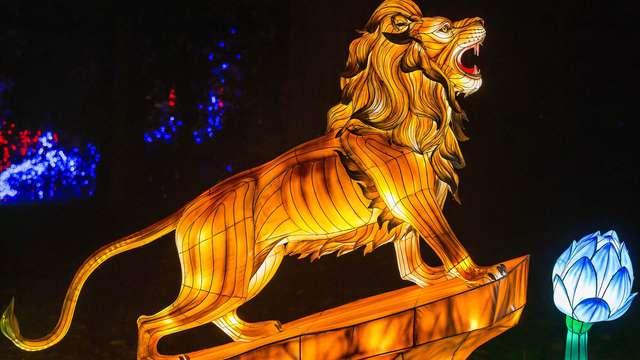 Pasa unos días cerca de Versalles y descubre el Zoo de Thoiry