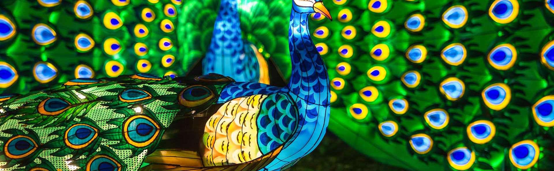 Séjour insolite en roulotte avec entrée au ZooSafari de Thoiry (à partir de 2 nuits)