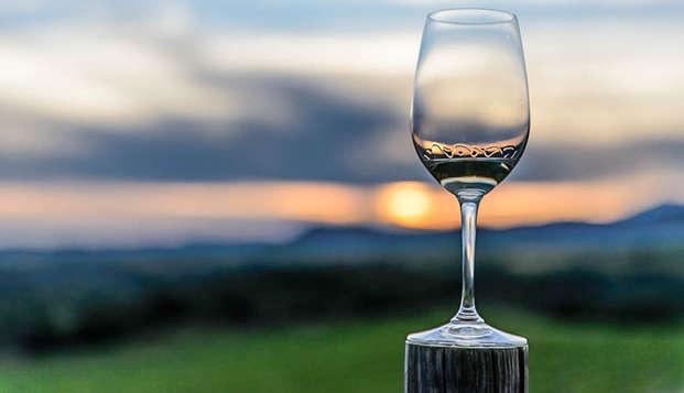 Descubre Huesca con el paladar con una cata de vinos del Somontano