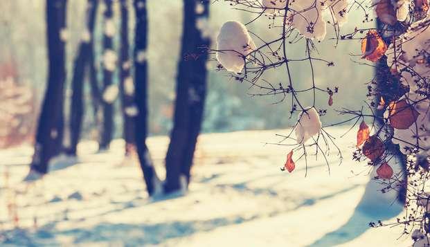 Beleef gezellig de winter in de omgeving van het centraal gelegen Zevenbergen (vanaf 2 nachten)