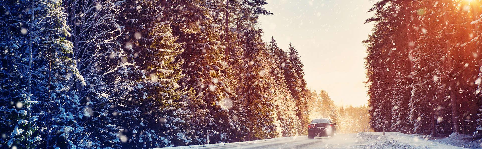 Profitez d'un Noël culinaire et de la magnifique nature du Veluwe (2 nuits)
