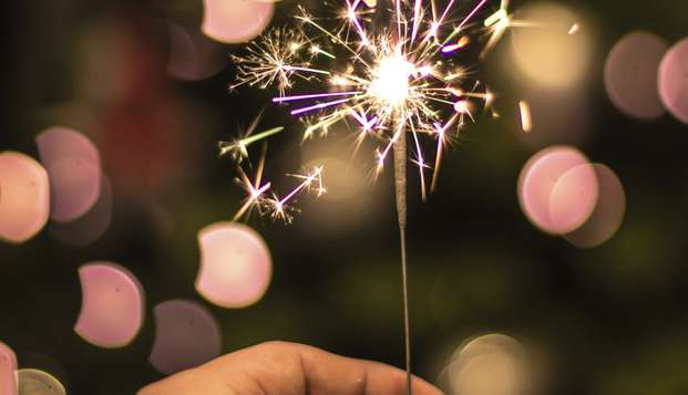 Venez célébrer la fin d'année en pleine nature !