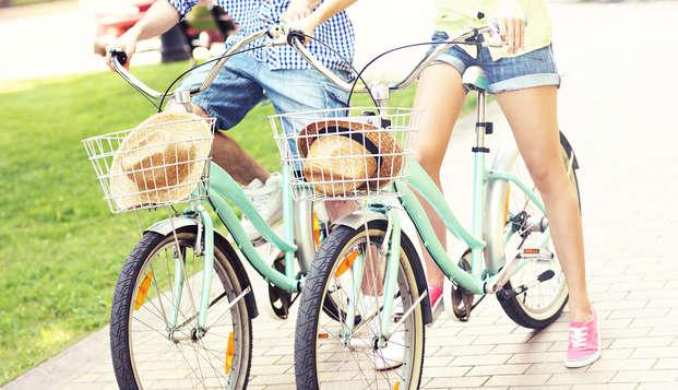 Séjour à proximité des canaux et découverte de la ville de Gouda à vélo !