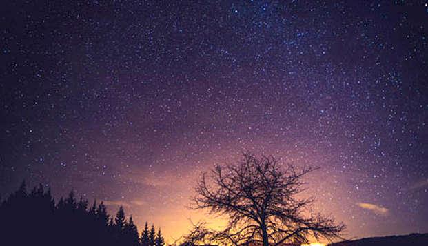 Dormir sous les étoiles au cœur de la nature dans la province du Limbourg