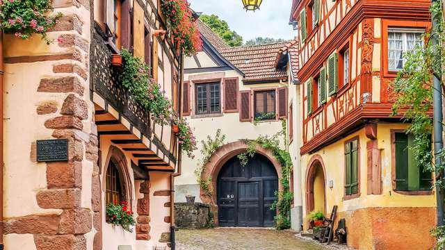 Séjour détente dans les Vosges du Nord