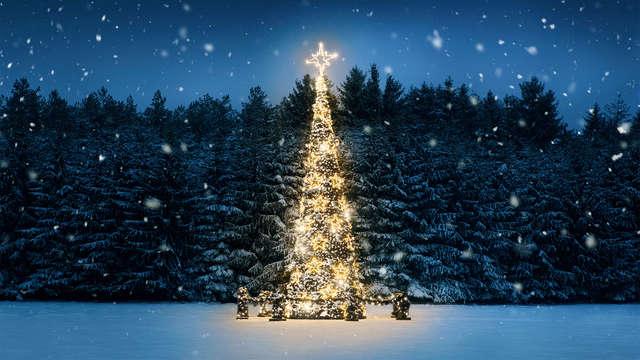 Magie de Noël au cœur de Colmar