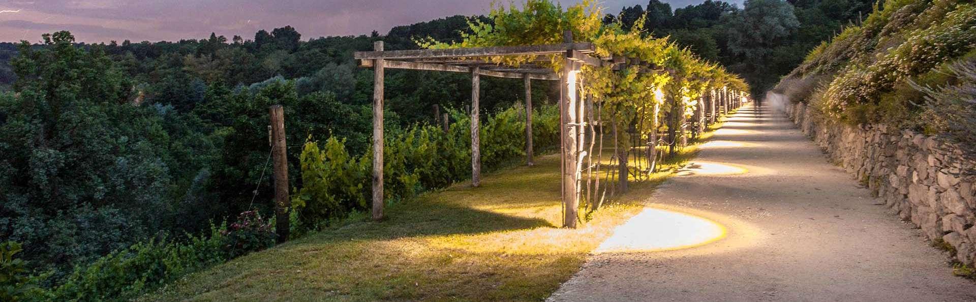 Vistaterra Country Resort - EDIT_Vigna_sera_01.jpg