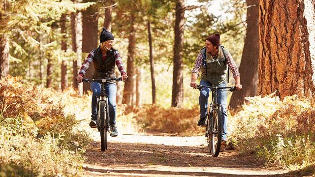 Escapada con alquiler de bicicletas y picnic para recorrer la Via Verde del Plazaola