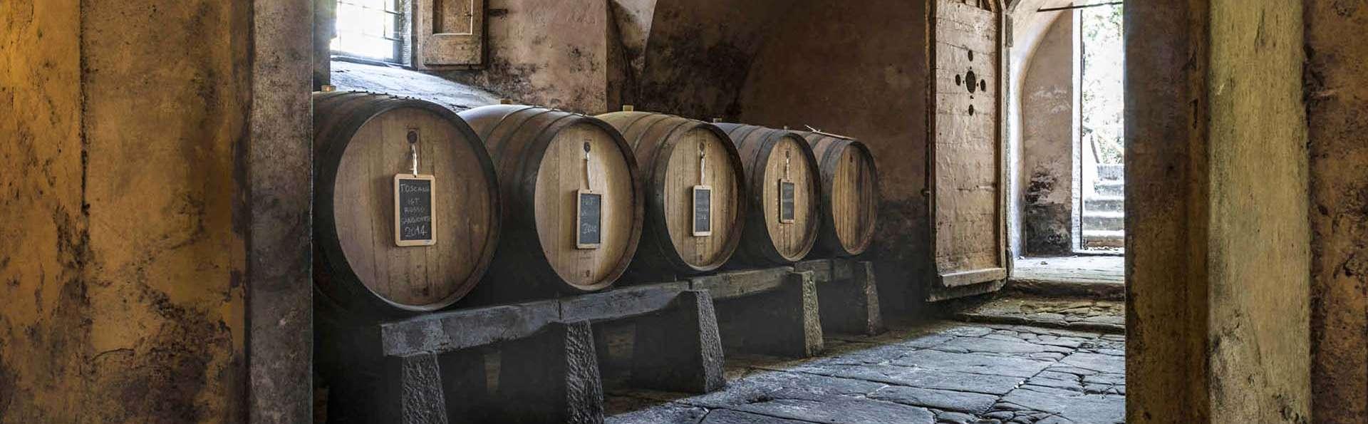 Week-end avec dégustation de vins, dans une propriété florentine située dans les collines du Chianti