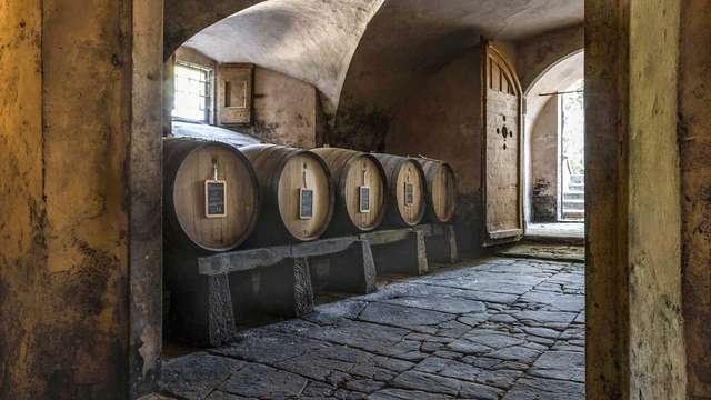 Cata de vinos en una finca florentina en las colinas de Chianti