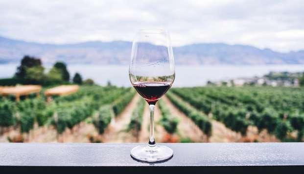 Elegancia y gastronomía con cata de vino en Chianciano Terme