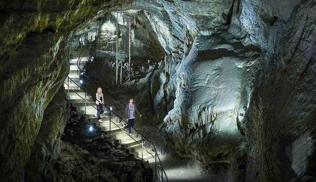 Partez à l'aventure avec un safari et découvrez les grottes magiques de Han