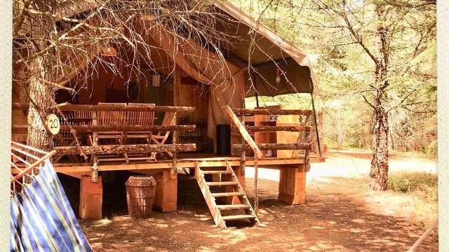 Séjour en cabane dans les bois pour une expérience inédite en Occitanie