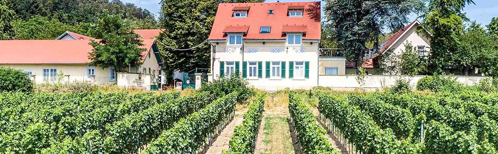 Halbersbacher Hotel Annaberg - EDIT_weinhang-annaberg_01.jpg