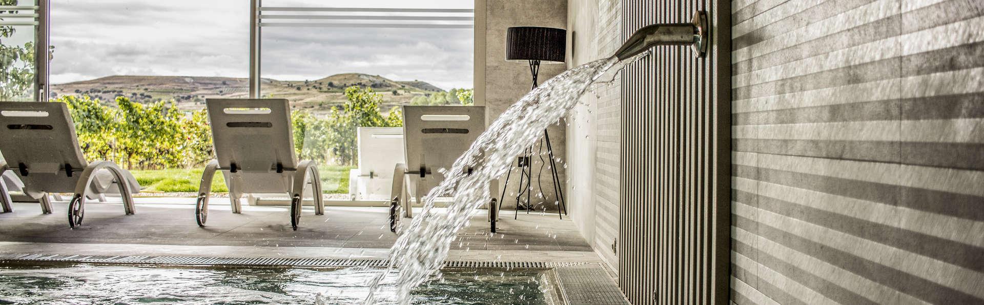 Escapada relax con acceso al circuito spa con vistas a los viñedos de Aranda de Duero
