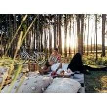 Arrangementen met picknickwandeling