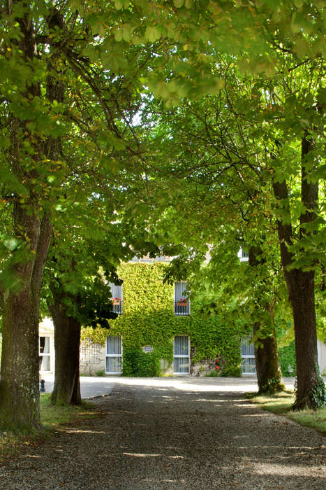 L'Orangerie du Château des Reynats  - IMG_7242_4__2__jpg