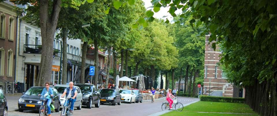Landgoed De Rosep - De_Lind_Oisterwijk_2013.jpg