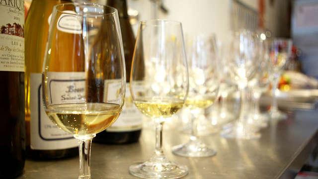 Cata de vino en el Domaine Villemagne para 2 adultos