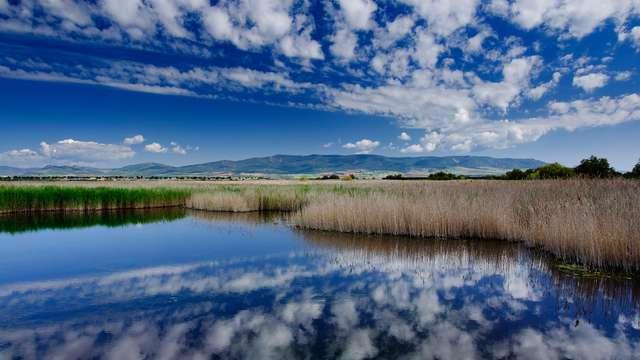 Visita guiada del Parque nacional de las Tablas de Daimiel