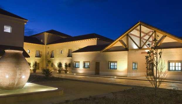 Hotel acogedor con visita a bodega y cata de vinos de calidad en la ruta del Quijote