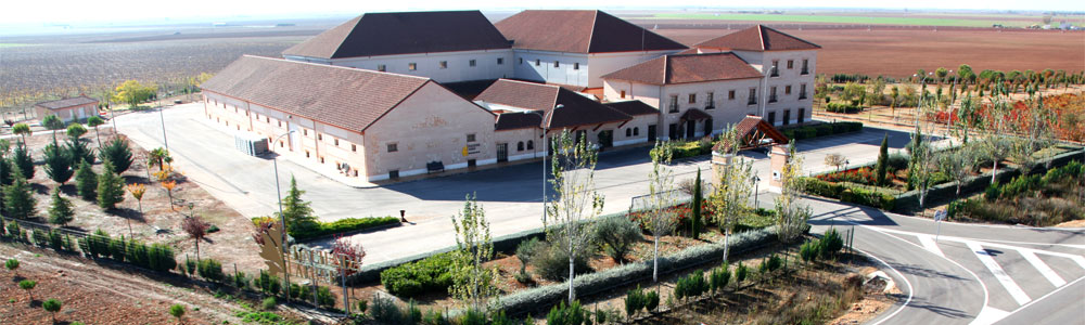 Bodegas Hacienda Albae