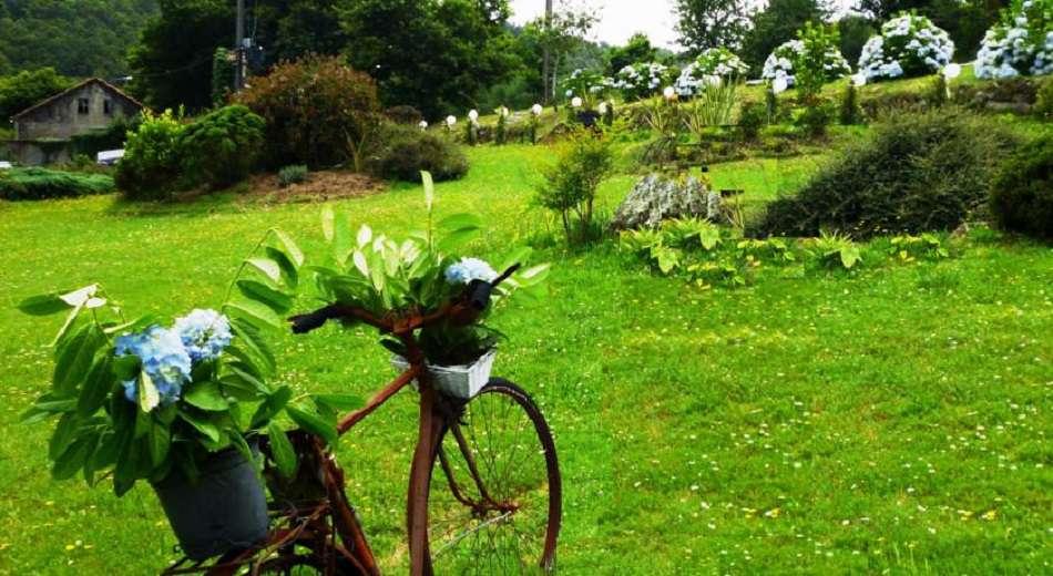 Casa Rural O Bergando - 12395314.jpg
