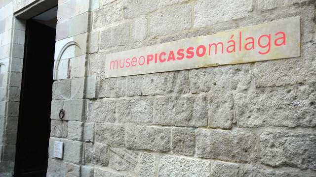 1 Entrada para el Museo Picasso Málaga para 2 adultos