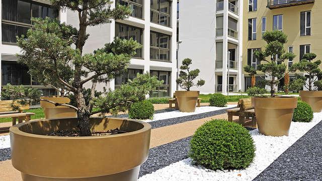 Lagrange City Lyon Lumiere - jardin zen