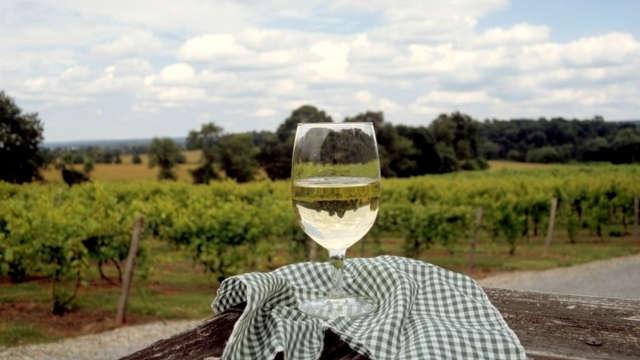 Dégustation de vins au Château de Marsannay pour 2 adultes