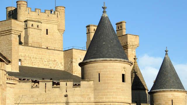 Visita al Castillo d'Olite
