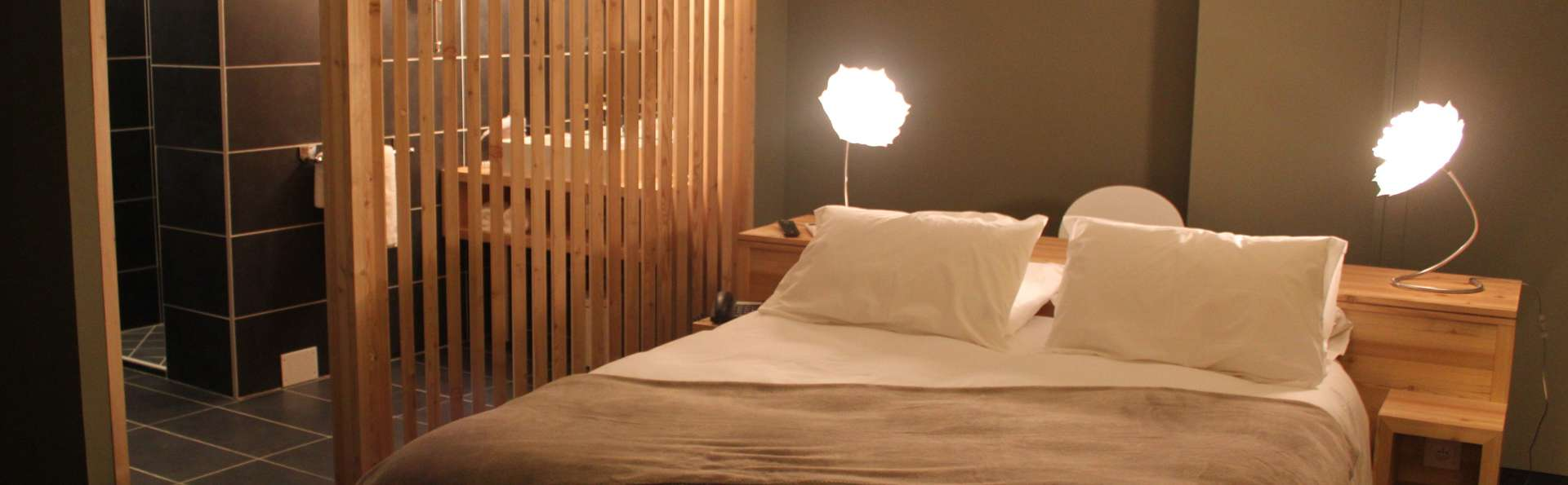 Mon Hôtel à Gap - MON_HOTEL_A_GAP__7_.JPG