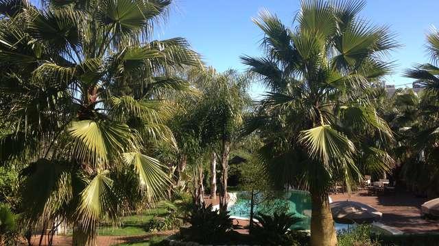 Cannes Villa St Barth - IMG