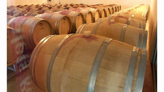 Dégustation de vins dans la cave des vignerons de Tavel pour 2 adultes