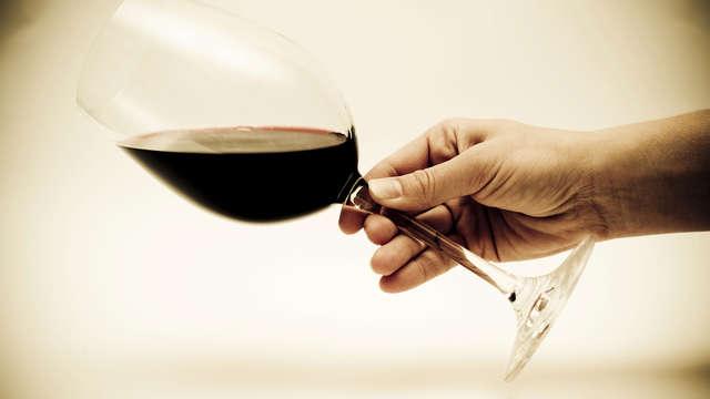 Cata de vino en el Domaine du Mas de Daumas Gassac para 2 adultos