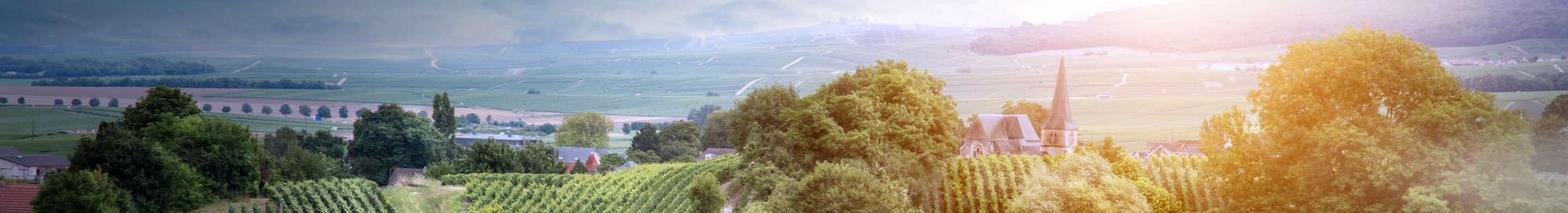 Weekendje weg in Champagne-Ardennen