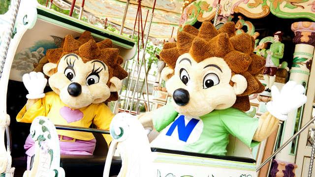 Entrée au Parc d'attractions Nigloland pour 2 adultes