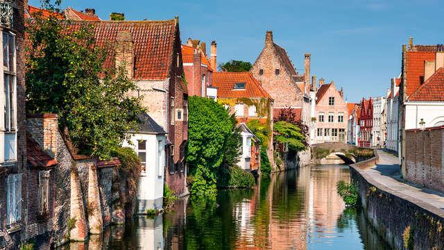 Apprenez-en plus sur les frites à Bruges