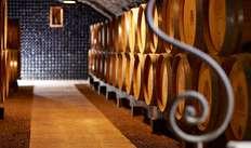 Dégustation de vins au Château de Pommard pour 2 adultes