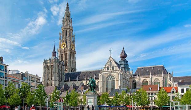 Cultuur en diner in Antwerpen (vanaf 2 nachten)