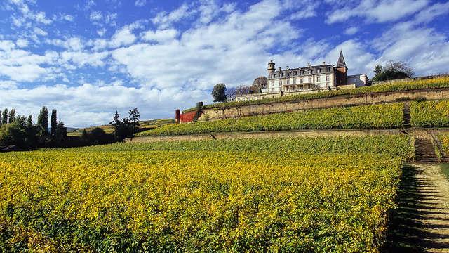 Chateau d Isenbourg