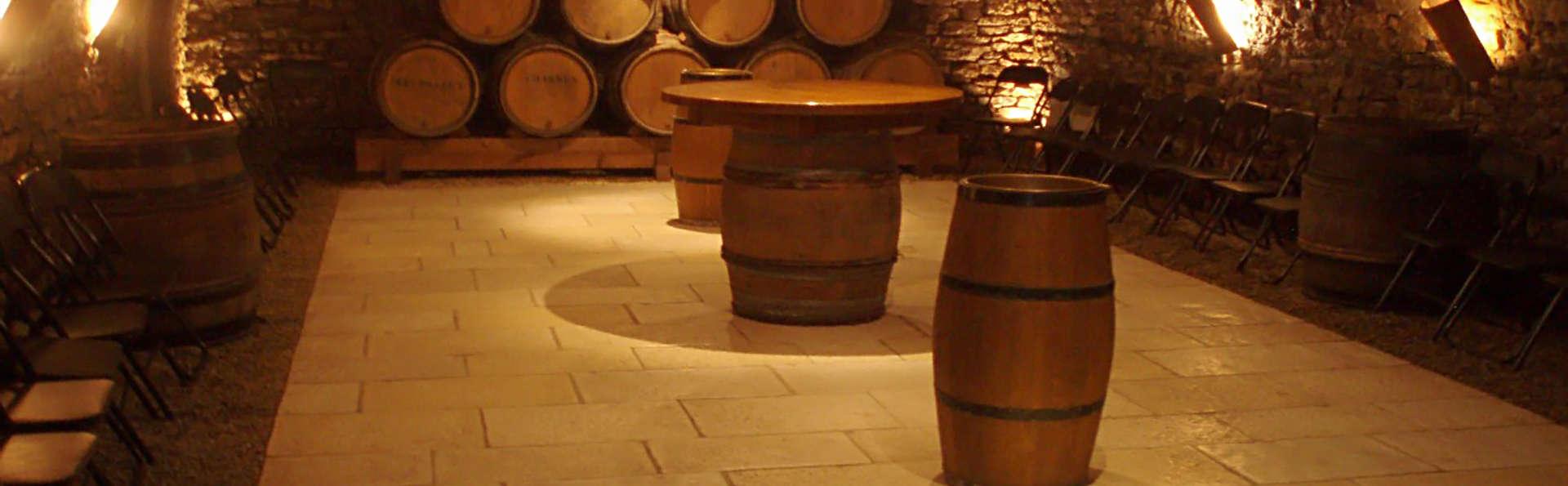 Visita a una bodega y degustación en Beaune