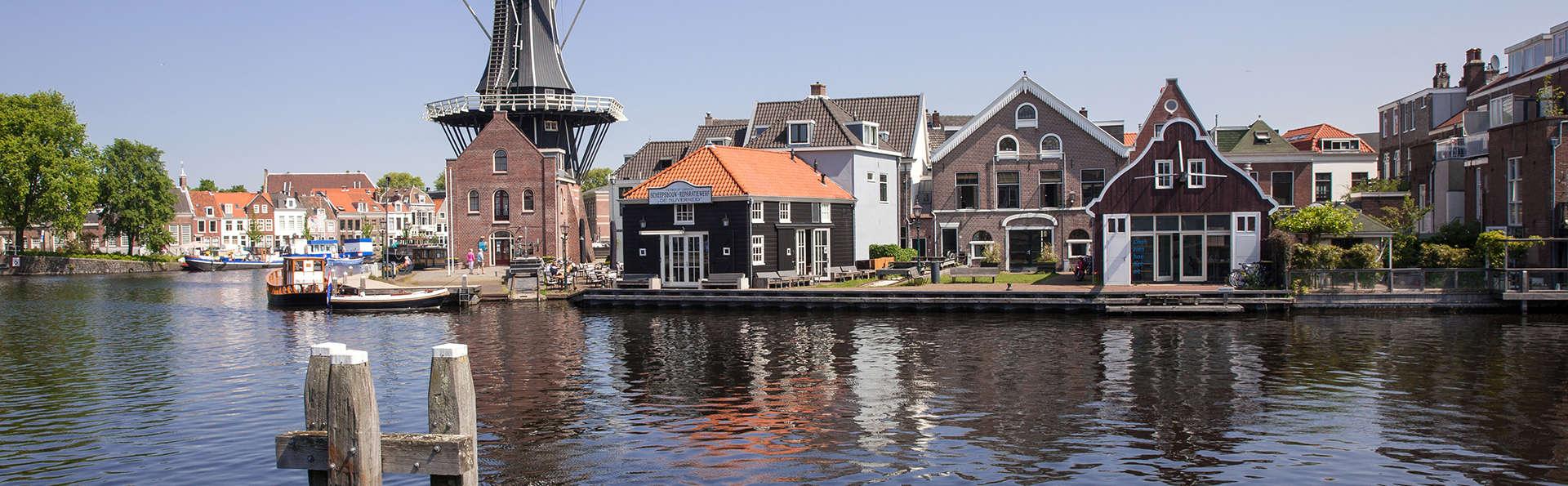 Explorez la pittoresque ville d'Haarlem