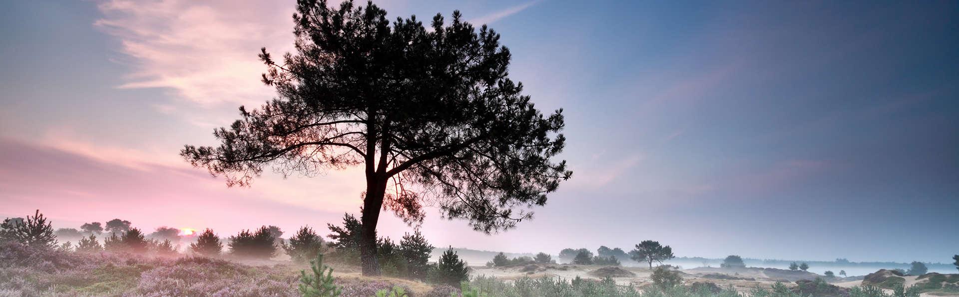 Wellness Hotel & Golf Resort ZuidDrenthe - edit_drenthe1.jpg