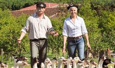 1 Entrée au musée du Foie Gras pour 2 adultes